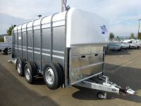 Ifor Williams TA 510 G14 427x178x183cm Rampe-Türe 3,5t