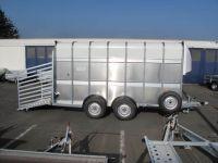 Ifor Williams TA 510 427x178x213cm Rampe-Türe-Kombi VORRAT 3,5t