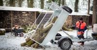 Ifor Williams TT 2012 STAHLKIPPER angeschrägt + Gitter 1,97x1,22m NEU
